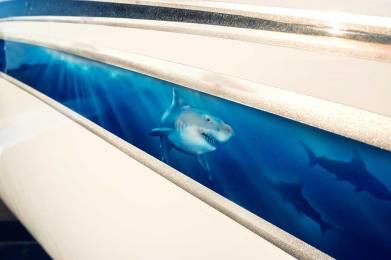 Underwater graphic on Jet