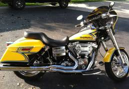 Harley-Davidson with Silver Leaf